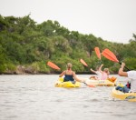 kayaking tour, naples, florida